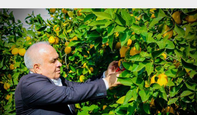 Başkan Tollu Çiftçiler Gününü Kutladı