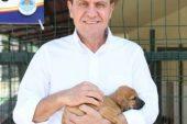 Kaşlı Geçici Hayvan Bakımevi ve Rehabilitasyon Merkezi 8 Haziran'da tekrar ziyarete açılıyor!