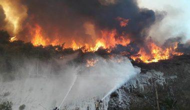 Marmaris'teki yangında ifadesi alınan iki çocuk: Kitap yakıyorduk, alev çoğaldı