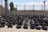Van Erciş'te arazide toplu halde yürüyen 113 Afgan mülteci gözaltına alındı